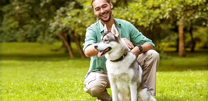 Man and Husky dog walk in the park