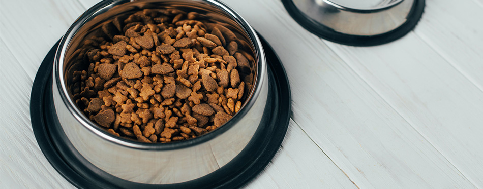 Metal bowl with pet food