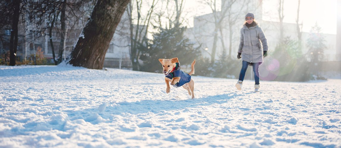 Woman-with-dog-in-winter-day