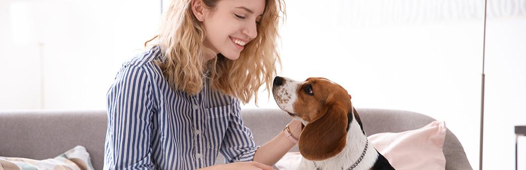 how-to-teach-a-dog-to-speak