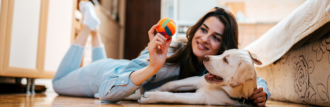 Brain Games for Dogs: How to Keep Your Dog Entertained Indoors