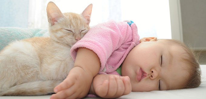 Baby and cat sleeping