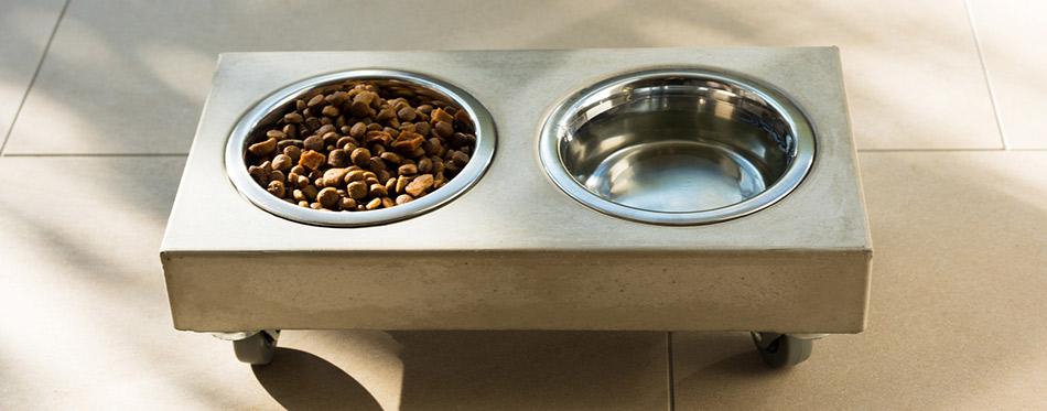 Cat food bowl