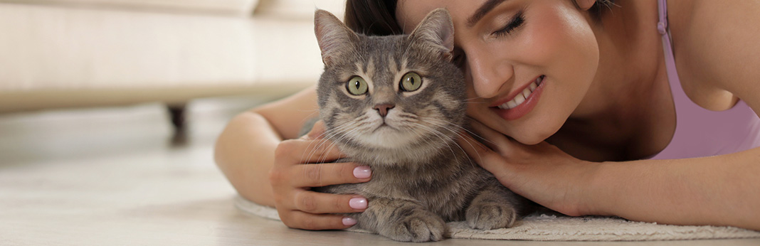 Do Cats Have Emotions?