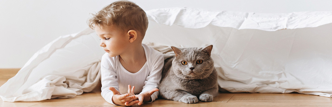 Introducing Cat to Baby - Keep Baby Safe and Kitty Secure