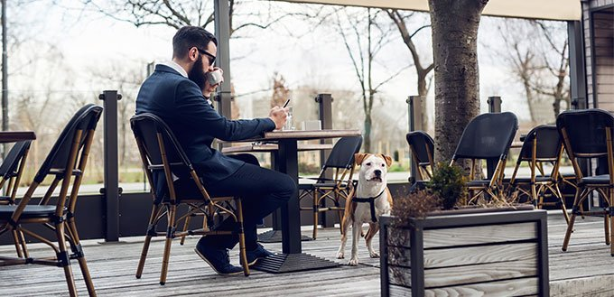 Man and dog in restaurant