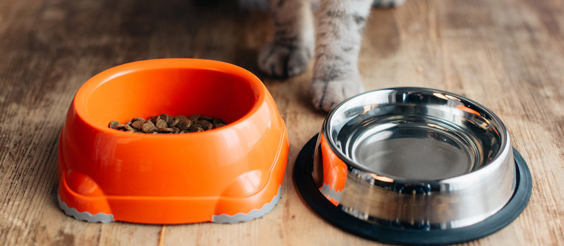 Meow-Mix-Cat-Food-Review