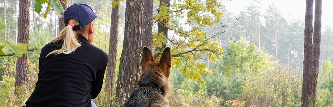 Guard-Dog-Training—How-to-Train-Your-Dog-to-Protect-You