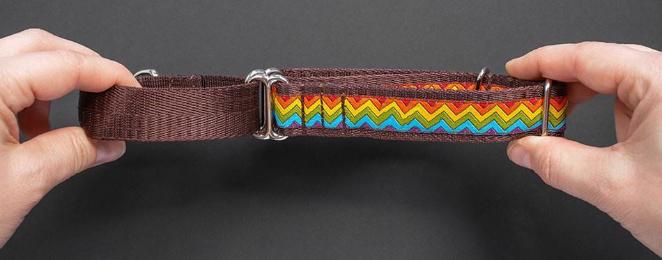 top view girl holds hands сolorful dog collar and leash from silky tape, one side is brown.