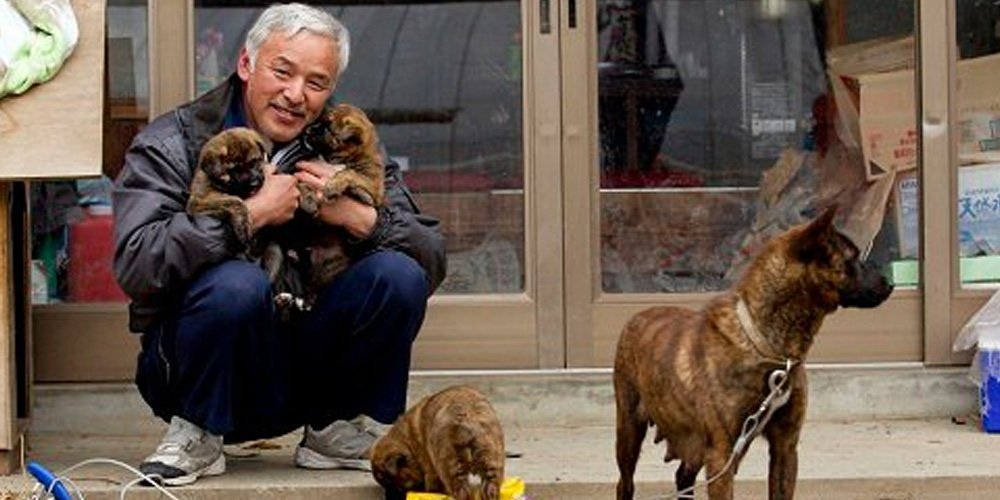 Caring For Animals After The Fukushima Nuclear Disaster – How Two Men Defy The Odds