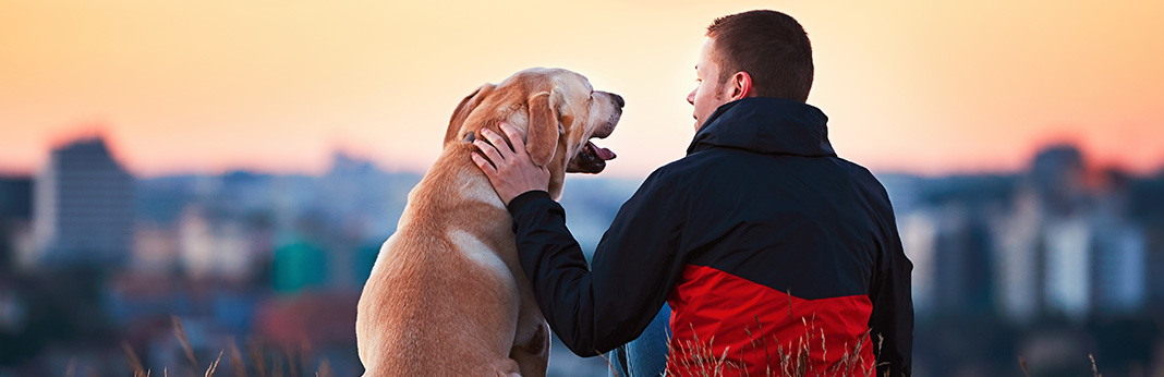 How to Cope With a Loss of a Pet