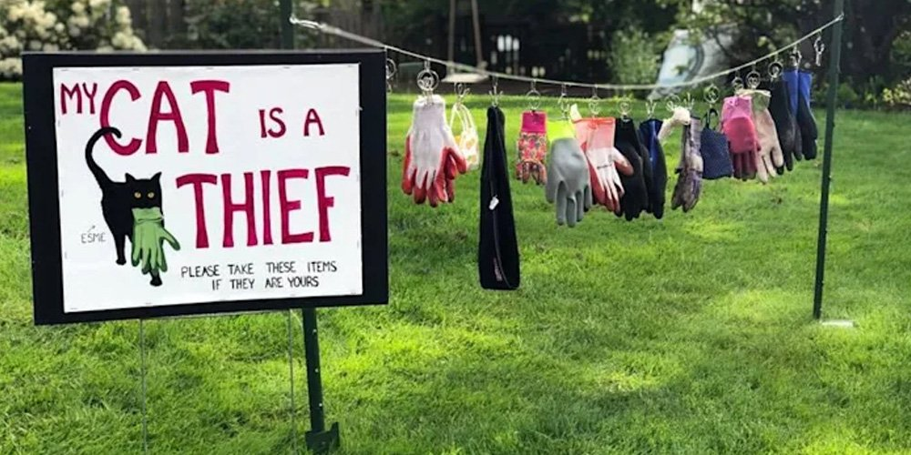 Humorous-Lawn-Display-Outs-Thieving-Cat-to-The-Neighbors