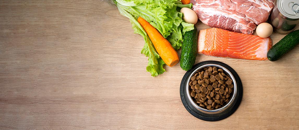15-Best-Dog-Food-Brands-in-2021