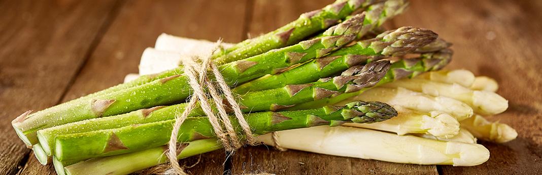 Can-Dogs-Eat-Asparagus