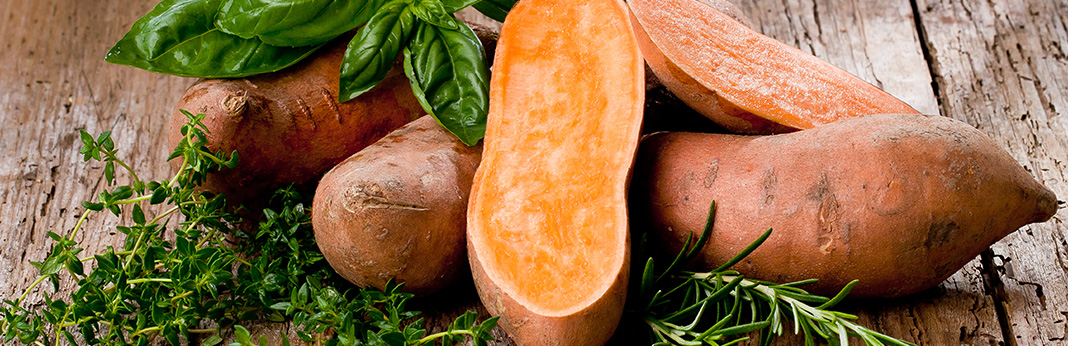 Can-Dogs-Eat-Sweet-Potatoes