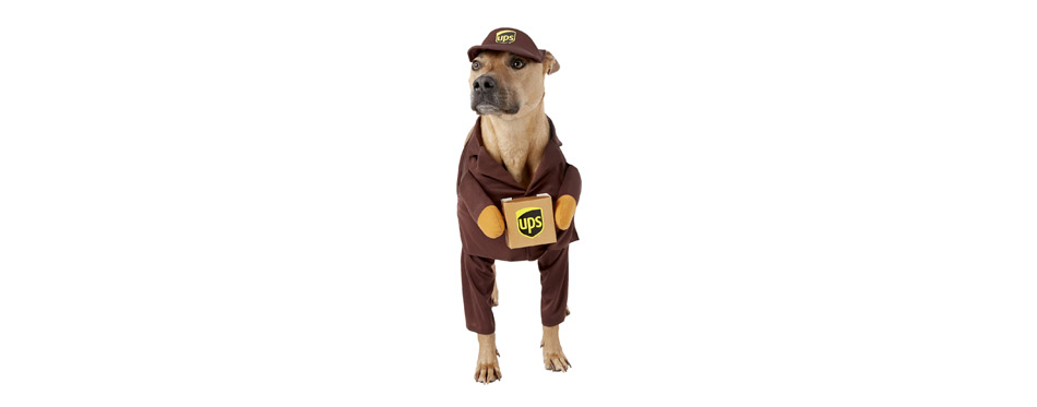 Best Large Dog Costume: California Costumes UPS Delivery Driver