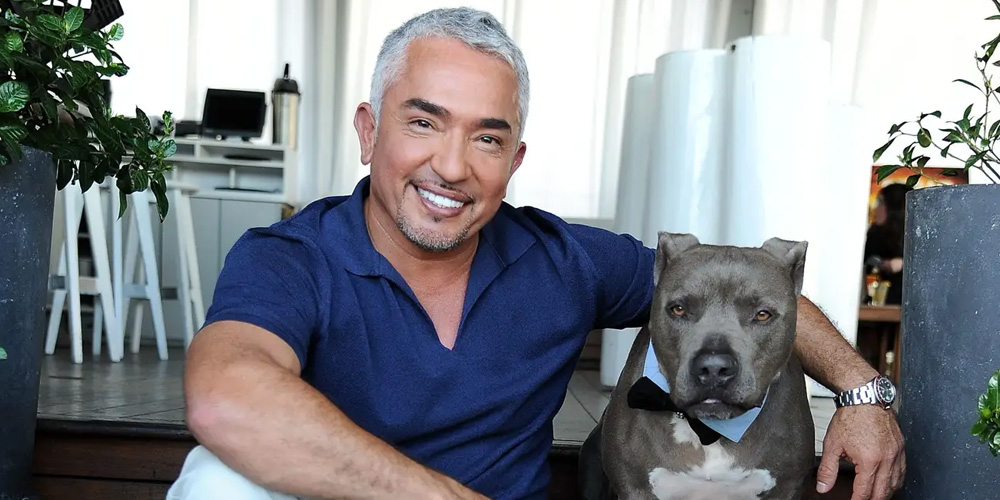 Cesar-Millan-in-the-Doghouse-After-Allegedly-Covering-Up-Dog's-Aggressive-History