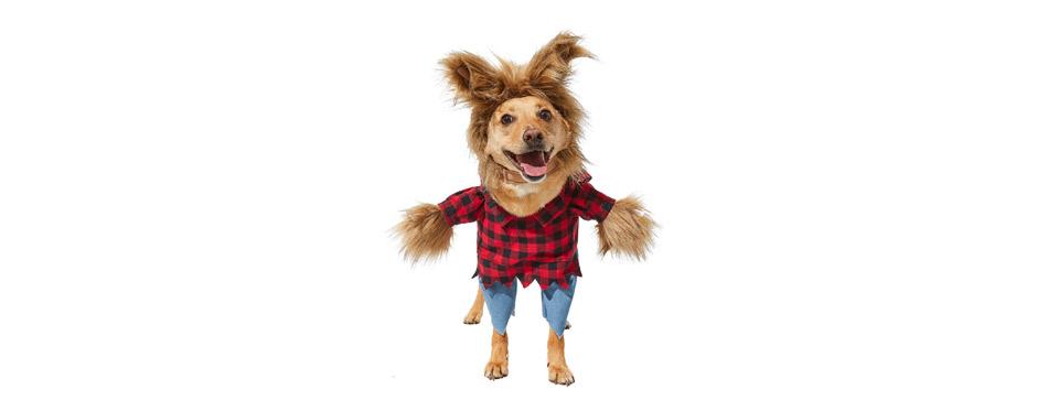 Best Overall: Frisco Front Walking Werewolf Dog & Cat Costume