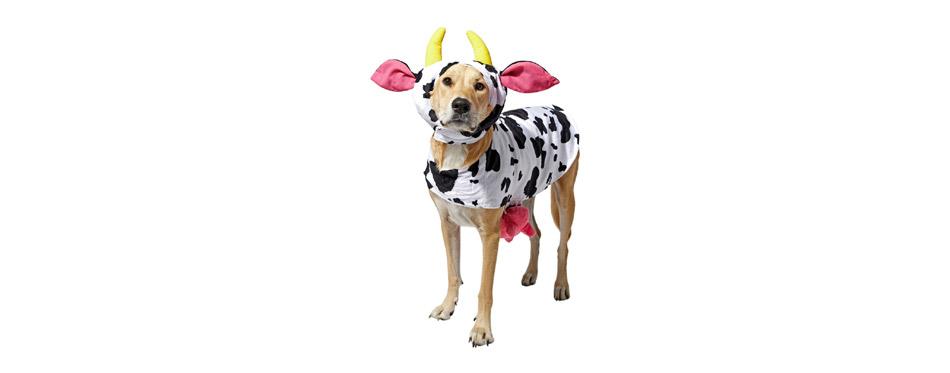 Frisco Happy Cow