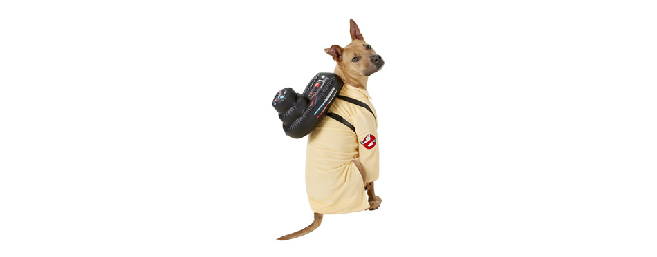 Best Ghostbuster Costume: Rubie's Costume Company Ghostbuster Jumpsuit
