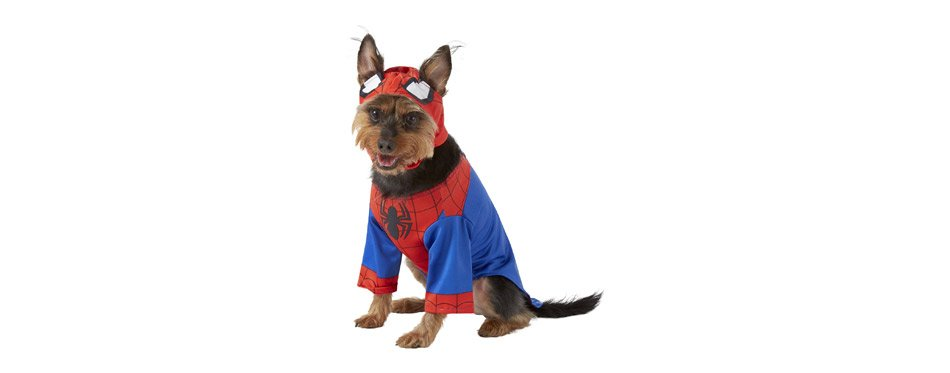Best Spiderman Costume: Rubie's Costume Company Spider Man