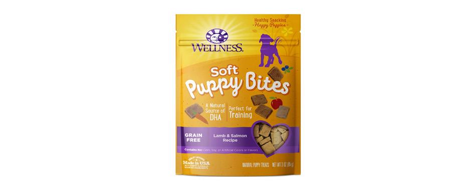 Best For Puppies: Wellness Soft Puppy Bites