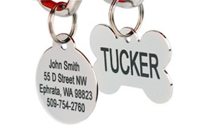 GoTags Stainless Steel Dog ID Tags