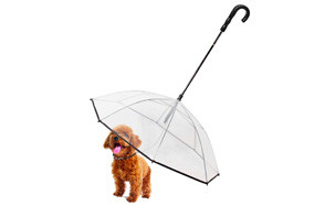 NiceHyacinth Pet Dog Umbrella with Leash