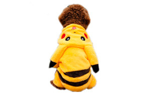 PAWZ Road Cartoon Design Dog Pokemon Costume