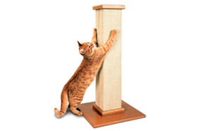Pioneer Pet SmartCat The Ultimate Scratching Post