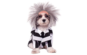 Beetlejuice Pet Costume by Rubie's