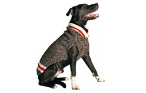 Boyfriend Dog Sweater by Chilly Dog