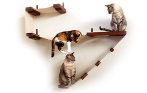 CatastrophiCreations Deluxe Cat Playplace