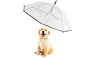 Morjava Pet Dog Umbrella with Leash