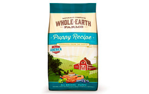Puppy Recipe Dry Dog Food