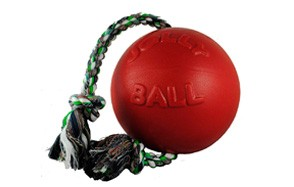 Romp-n-Roll Ball by Jolly Pets