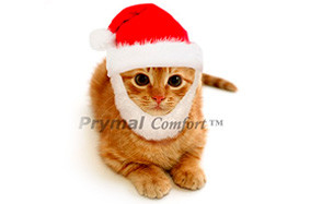 Santa Cat Costume by Prymal Comfort