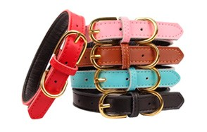 AOLOVE Basic Classic Leather Pet Collars