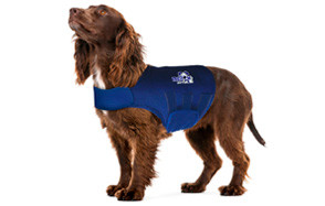 Dog Anxiety Vest Reviews Best Dog Anxiety Vests Of 2019
