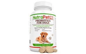 Probiotics for Dogs by NutraPet
