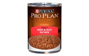 Purina Pro Plan Savor Adult Wet Dog Food