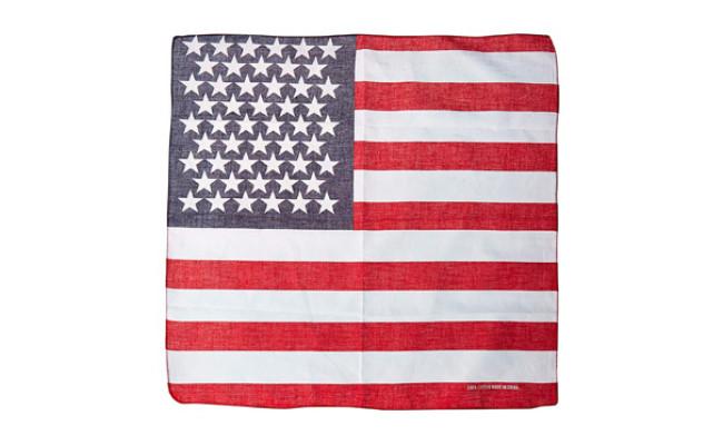 AISHNE American Flag Bandana for Dogs