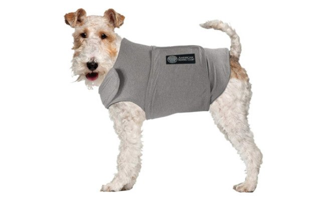 AKC – American Kennel Club Anti Anxiety and Stress Relief Calming Coat for Dogs