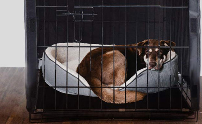 AVANIGO Dog Crate Cover