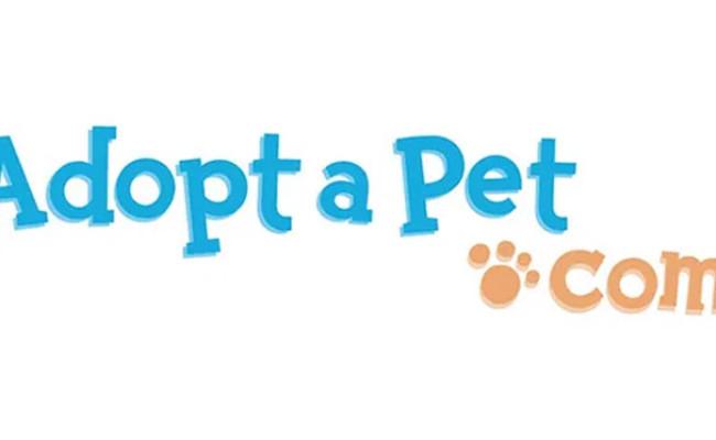 Adopta Pet