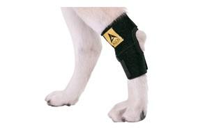 Agon Canine Dog Knee Brace Compression Wrap