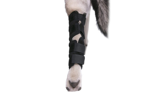 Agon Dog Rear Leg Joint Wrap