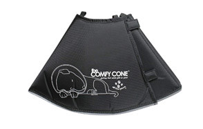 All Four Paws Dog Cone