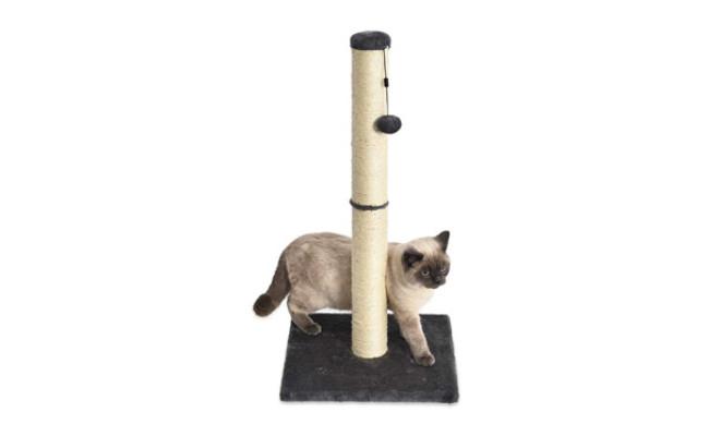 Amazon Basics Medium Cat Scratching Post