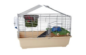 The Best Hamster Cages (Review) in 2019 | My Pet Needs That